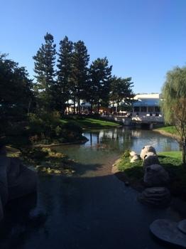 シンデレラ城の池.JPG